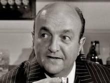 Raoul Volfoni